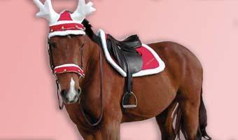 Weihnachtspferd Zubehör